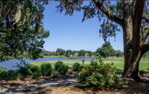 Heritage Plantation Golf Course Real Estate for sale